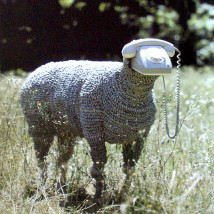"""Telephone Sheep"", Jean-Luc Cornec"